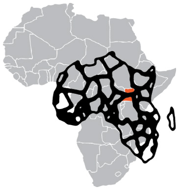 Content Group Africa